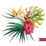 Trevliga tropiska blommor Arkivbild