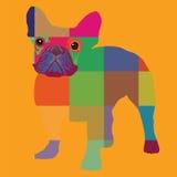 Trevligt färgbulldoggtryck Arkivfoton