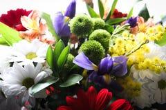 Trevligt foto av blommor royaltyfria foton