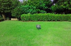 Trevligt härligt grönt gräs, sida av borobudurtemplet, stor kultur royaltyfri illustrationer