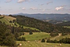 Trevligt landskap nära den Petranky bosättningen Fotografering för Bildbyråer