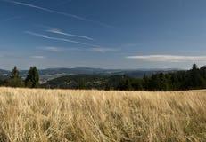Trevligt landskap nära den Petranky bosättningen Royaltyfri Foto