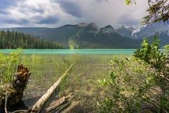 Trevligt siktsblåtthav med trä arkivfoton