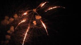 Trevligt slut upp fyrverkerit i mörk himmel för jul och nytt år arkivfilmer