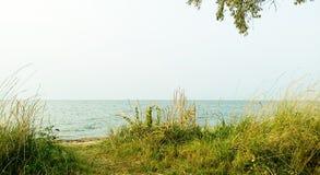 Trevligt ställe i gräs nära havet royaltyfri fotografi