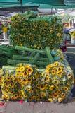 Trevligt travde solrosor med stammar för lång gräsplan, Paloquemao marknad Royaltyfria Foton