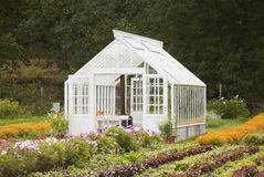 trevligt växthus royaltyfri fotografi