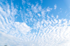 Trevligt vitmoln på skyen Royaltyfri Bild