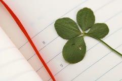 Trevo de cinco folhas e dia novo. Imagem de Stock