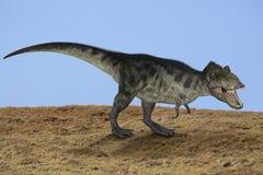 TRex dinosaur. TRex Tyrannosaurus Rex dinosaur hunting Royalty Free Stock Photography