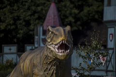 Trex Royalty Free Stock Photography