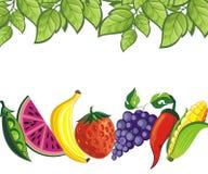 Trägt Hintergrund Früchte Stockfoto