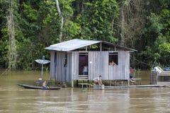 Trähus på styltor längs Amazonet River och regnskogen, B Arkivfoton