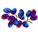 Triángulos de las uvas, uvas azules abstractas en un fondo blanco Fotografía de archivo libre de regalías