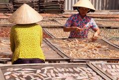 tri bafiskerilandskap Royaltyfri Fotografi