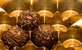 Tri Choco. The last trio of scrumptious gourmet designer chocolates royalty free stock photo