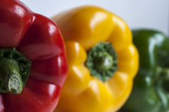 Tri-color pepper Royalty Free Stock Photos