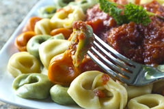 Tri-Color Tortellini. Tri-colored tortellini pasta with red tomato sauce and parsley Royalty Free Stock Photography