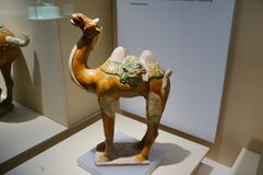 Tri-colored glazed camel of the Tang Dynasty stock photo