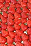 Tri de fraises Photos stock