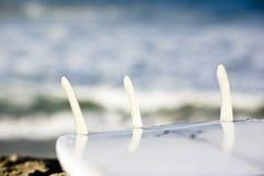 Tri-Flosse Surfbrett lizenzfreie stockbilder