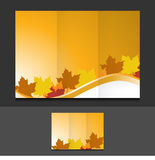 Tri fold autumn leaves template illustration Royalty Free Stock Photo