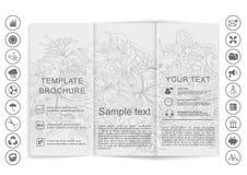 Tri-Fold Brochure mock up  design Stock Photo