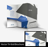 Tri-fold Fashion Brochure Design Stock Photo