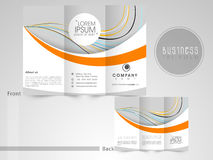 Tri-Fold flyer, template or brochure for business. Royalty Free Stock Images