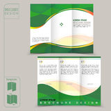 Tri-fold green template for business advertising brochure Stock Image