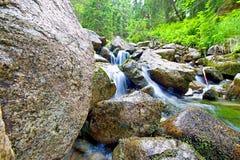 Tri rieky, Demanovska Dolina, Slovakien Arkivbild