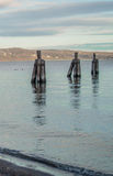 Triad. Pier remnants in the Hudson River overlooking Westchester county, NY Royalty Free Stock Photography