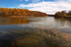 湖triadelphia 库存图片