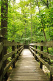 Trial with bridge. Trial path with wooden bridge in the woods stock photos