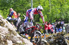 Trial Spain Championship. Royalty Free Stock Images