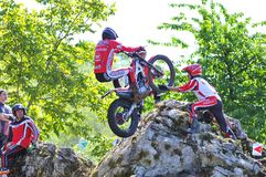 Trial Spain Championship. Royalty Free Stock Photography