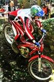 Trial World Championship 2008 - Tolmezzo Stock Photos