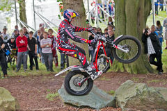 Trials riding display Stock Photos
