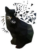Triangle Black Serious Cat With Brown Eyes. Stock Photos