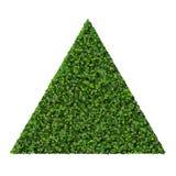 Triangle faite à partir des feuilles de vert d'isolement sur le fond blanc 3d rendent Photographie stock