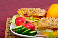 Triangle fresh sandwich Stock Image