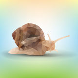 Triangle garden snail Royalty Free Stock Photo