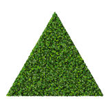 Triangle made from green leaves isolated on white background. 3D render. Beautiful graphic made of green leaves on gradient background Stock Photography