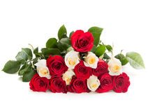 Triangle of red and white rose.  Stock Images