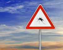 Triangle on rod road sign mosquito attention with cloudy sky. Advice information insect royalty free stock images