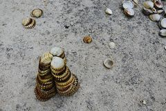 Triangular decorative pyramid made of clam mollusc seashells on concrete molo Royalty Free Stock Images