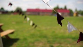Triangular flags sway in the wind-3. Triangular flags sway in the wind. Holiday decoration stock footage