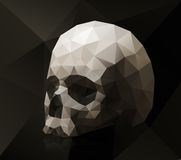 Triangular skull Royalty Free Stock Images