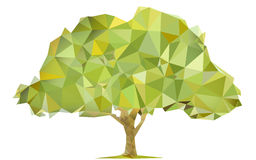 Triangular tree Royalty Free Stock Images