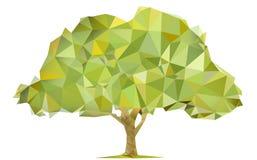 Triangular tree Royalty Free Stock Images